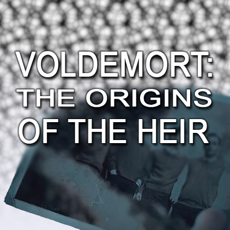 Voldemort: the Origins of the Heir | Recensione