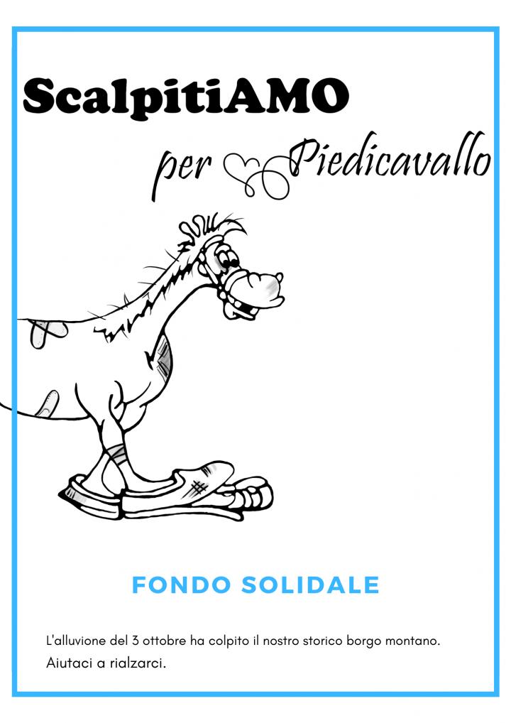 Dopo l'alluvione del 3 ottobre 2020, un comitato di volontari ha aperto la campagna di solidarietà ScalpitiAMO per Piedicavallo